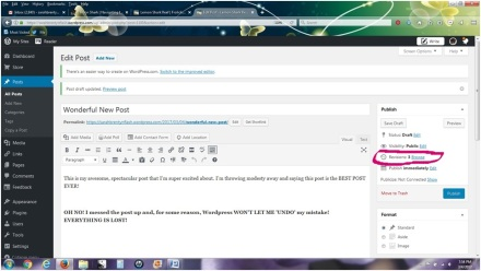 screen-shot-revise2-sarahb